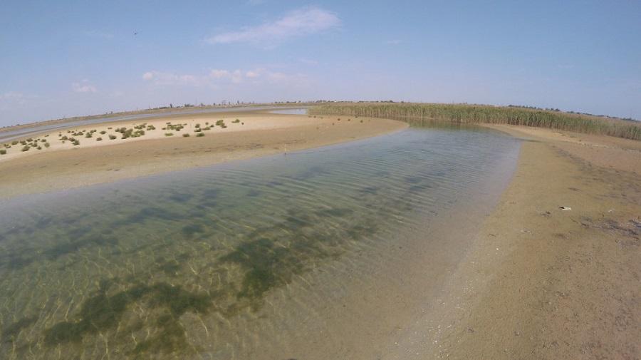 Соляные озера и уникальная экосистема: интересные факты о заливе Сиваш на Приазовье