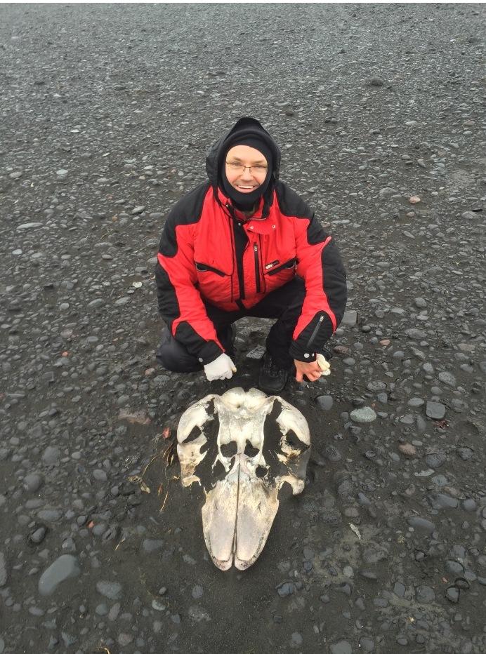 """""""Пронизливий холод"""": як я жив на дикому острові під вілканом та льодовиками"""